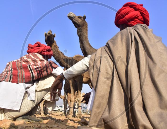 Rajasthani Men in Traditional Attire