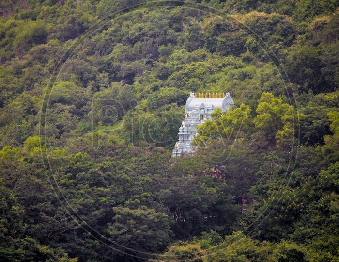 Temple Shrine / Gopuram Spotted in Foot steps Way To tirumala