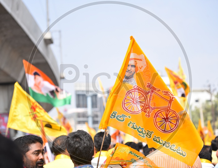 TDP Flags While Election Campaign