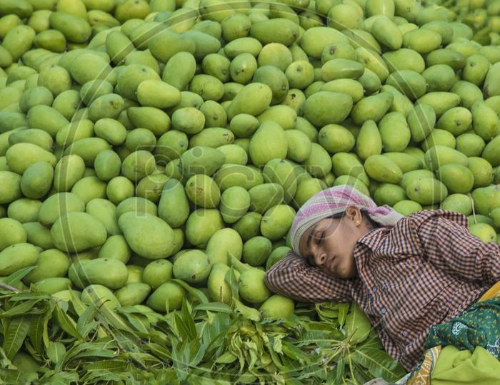 Mango Dreams