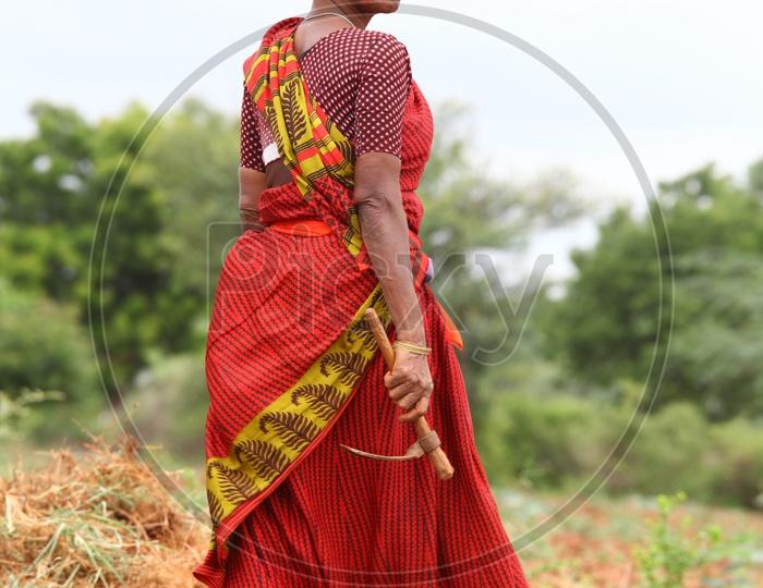 Photograph of Indian Women Farmer