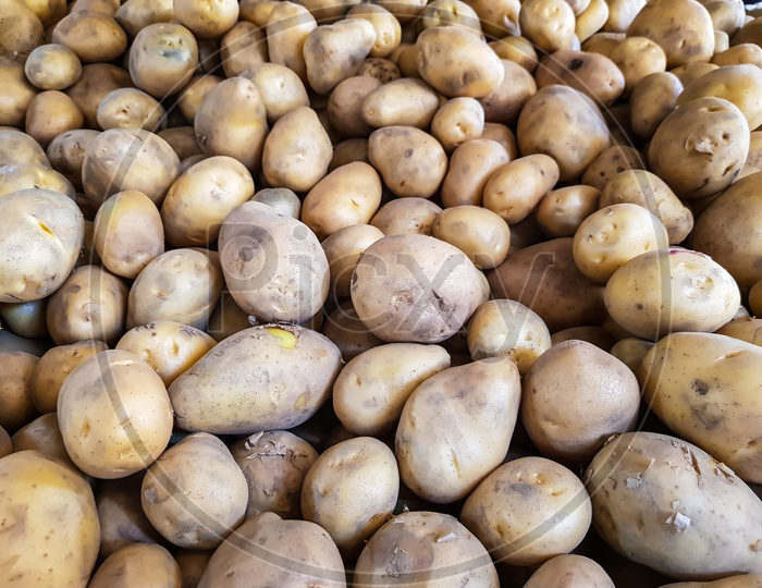 Potato Bunch Raw Uncooked Ready To Sale In Vegetable Market