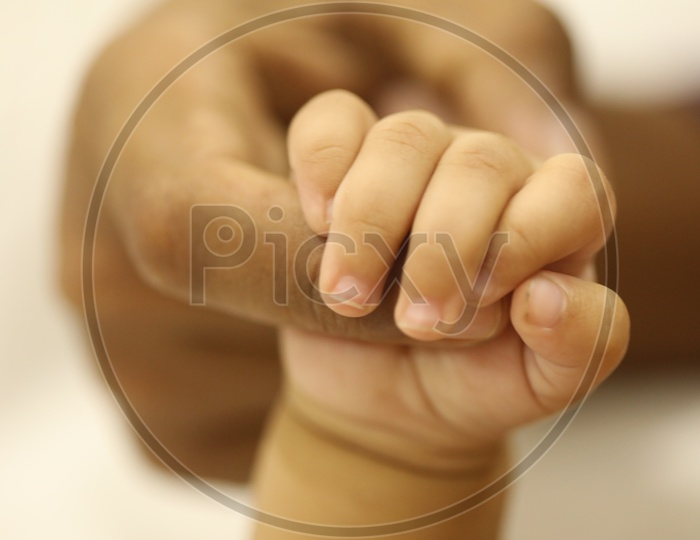 Just Born Baby hand holding father`s finger representing father and child love