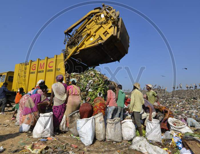 Indian Rag Pickers  In an  Dumping Ground , Guwahati