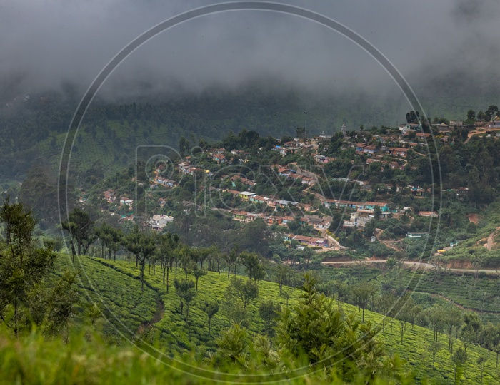 View of tea plantations and houses in Ooty