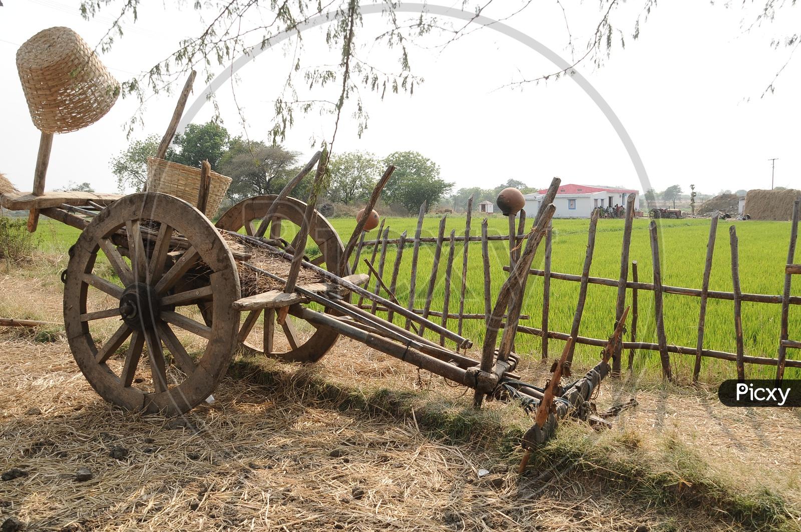 Bullock Cart In Rural Villages