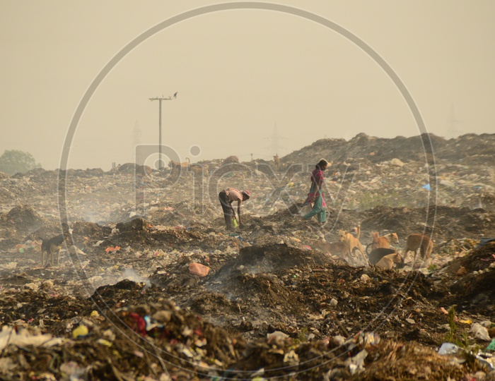 Unidentified Rag Pickers Collecting Recyclable Materials From Garbage Dumping Yard