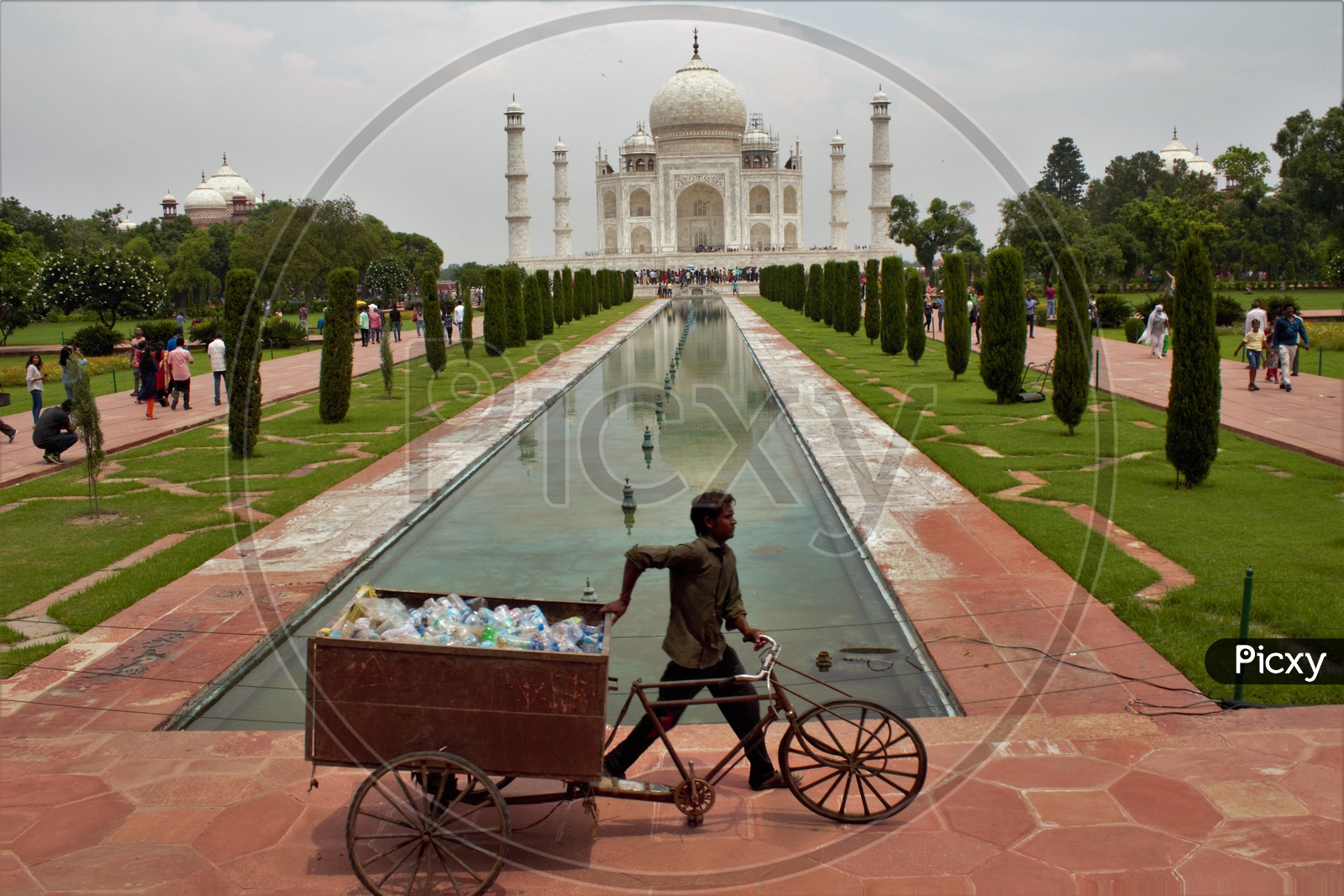 A Sanity Cleaner Carrying The Plastic Thrown Around Taj Mahal In a Rickshaw