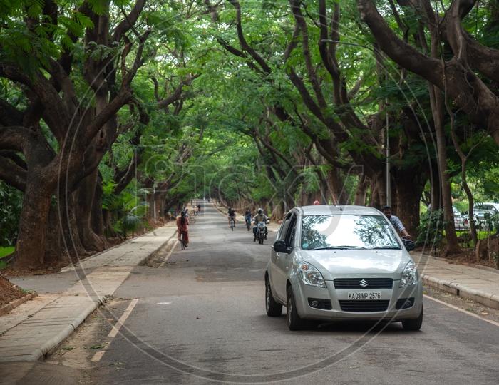 IISC Campus, Indian Institute of Science,Bangalore