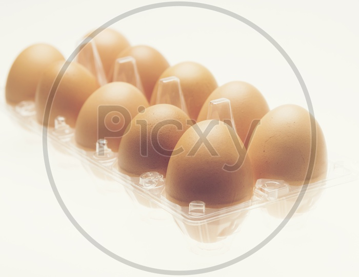 Chicken Eggs  In a Tray  on an Isolated White  Background