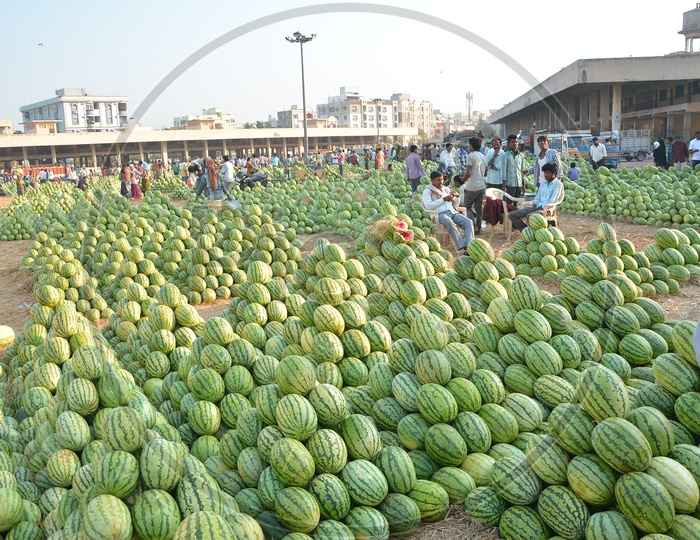 Fruit Market With Piles Of Watermelons in Kothapeta , Hyderabad
