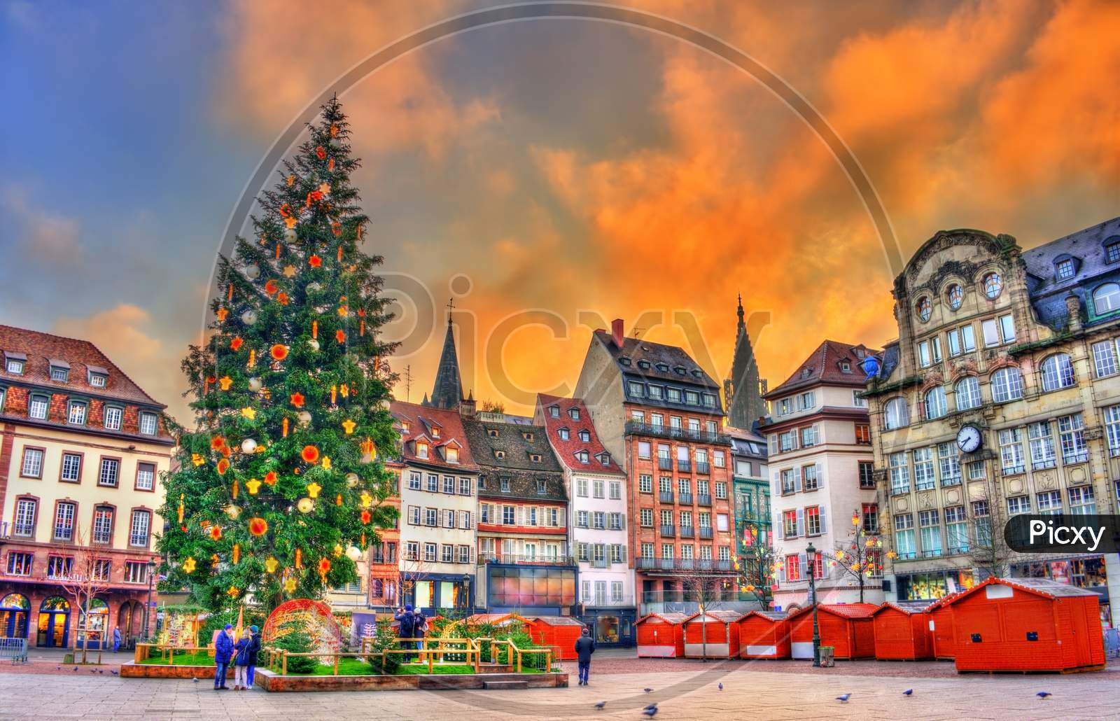 Christmas Tree At The Christmas Market In Strasbourg, France