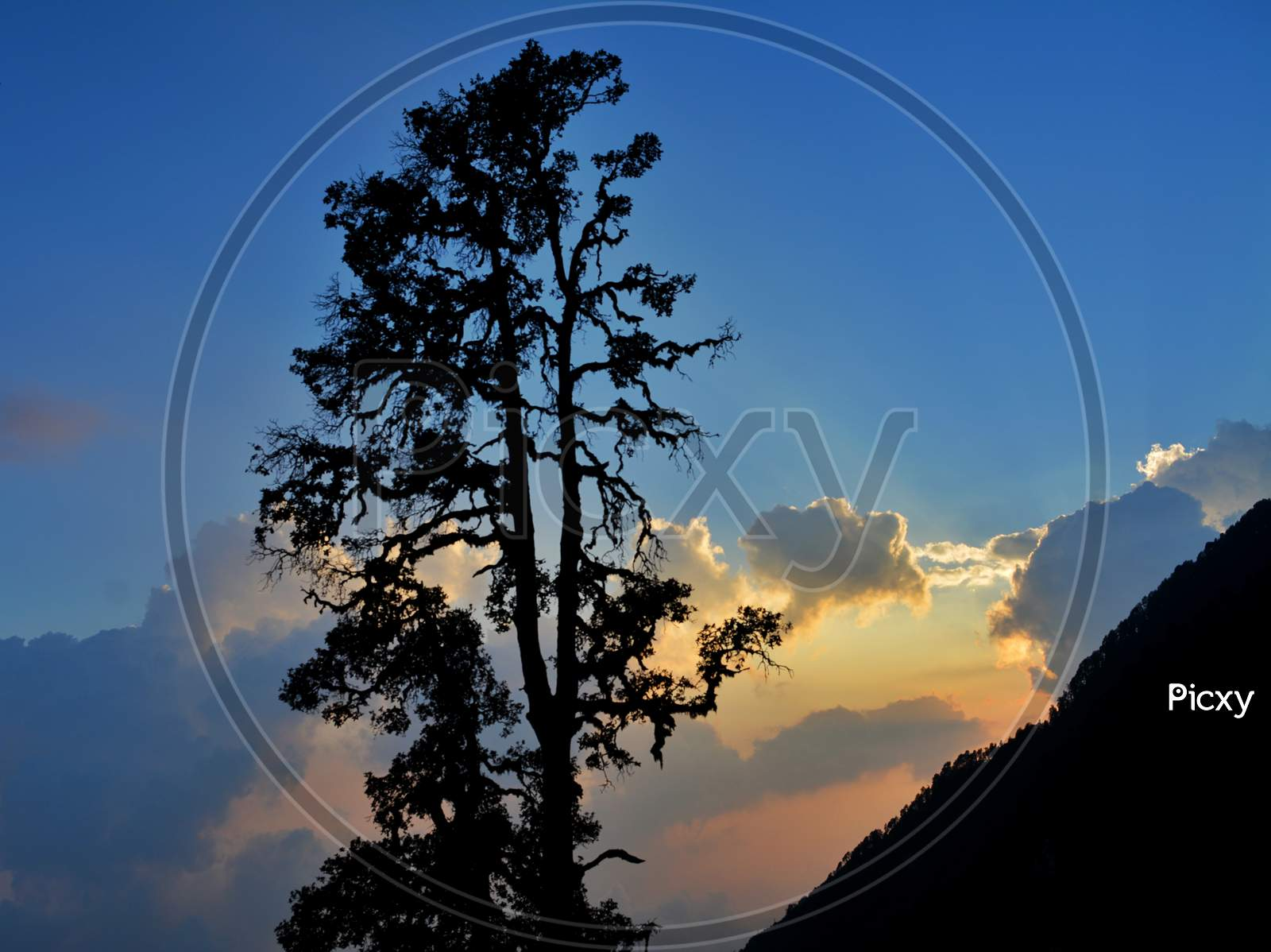 Sunset during Triund Hill trek in Himachal Pradesh