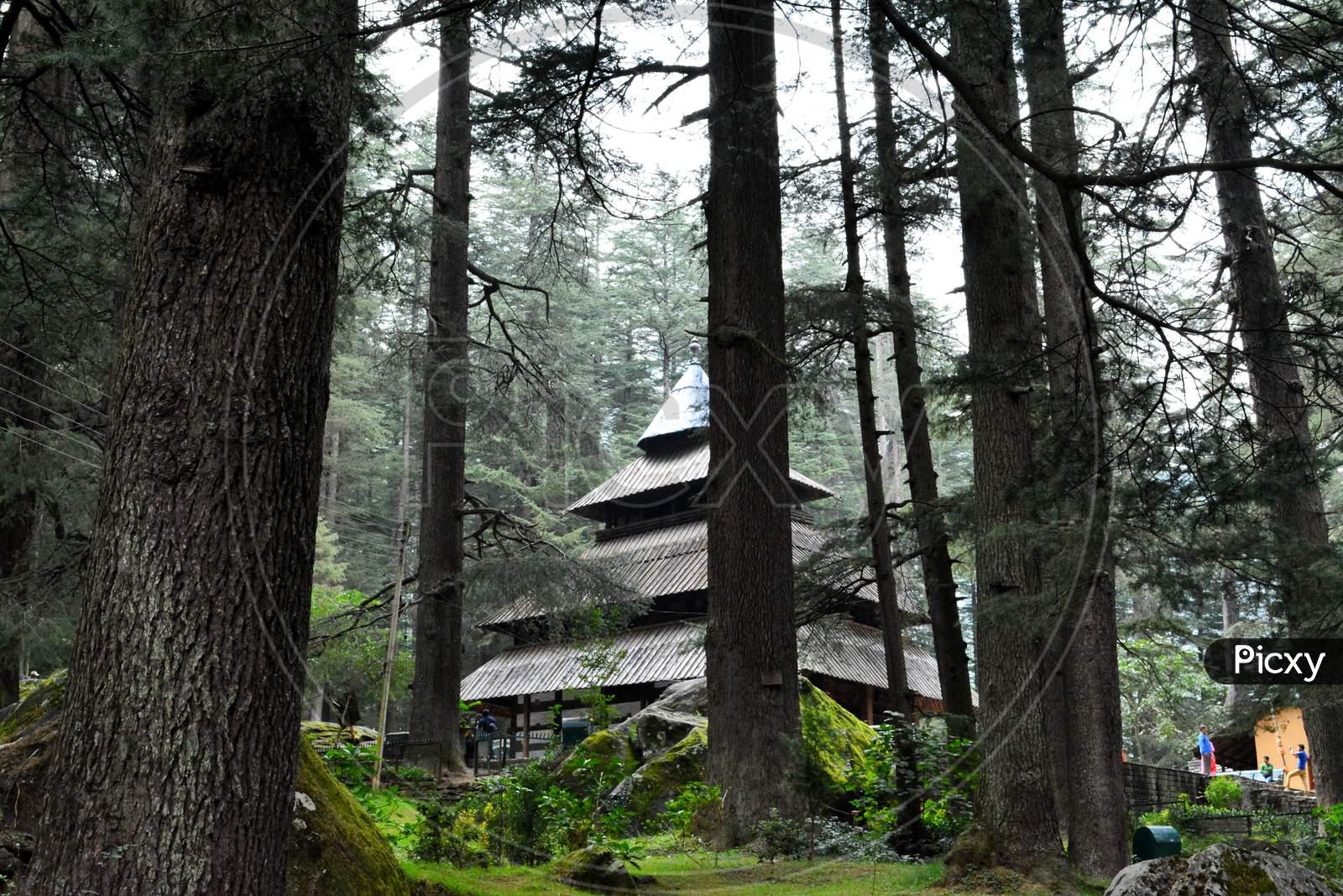 Hadimba temple in Manali Himachal Pradesh