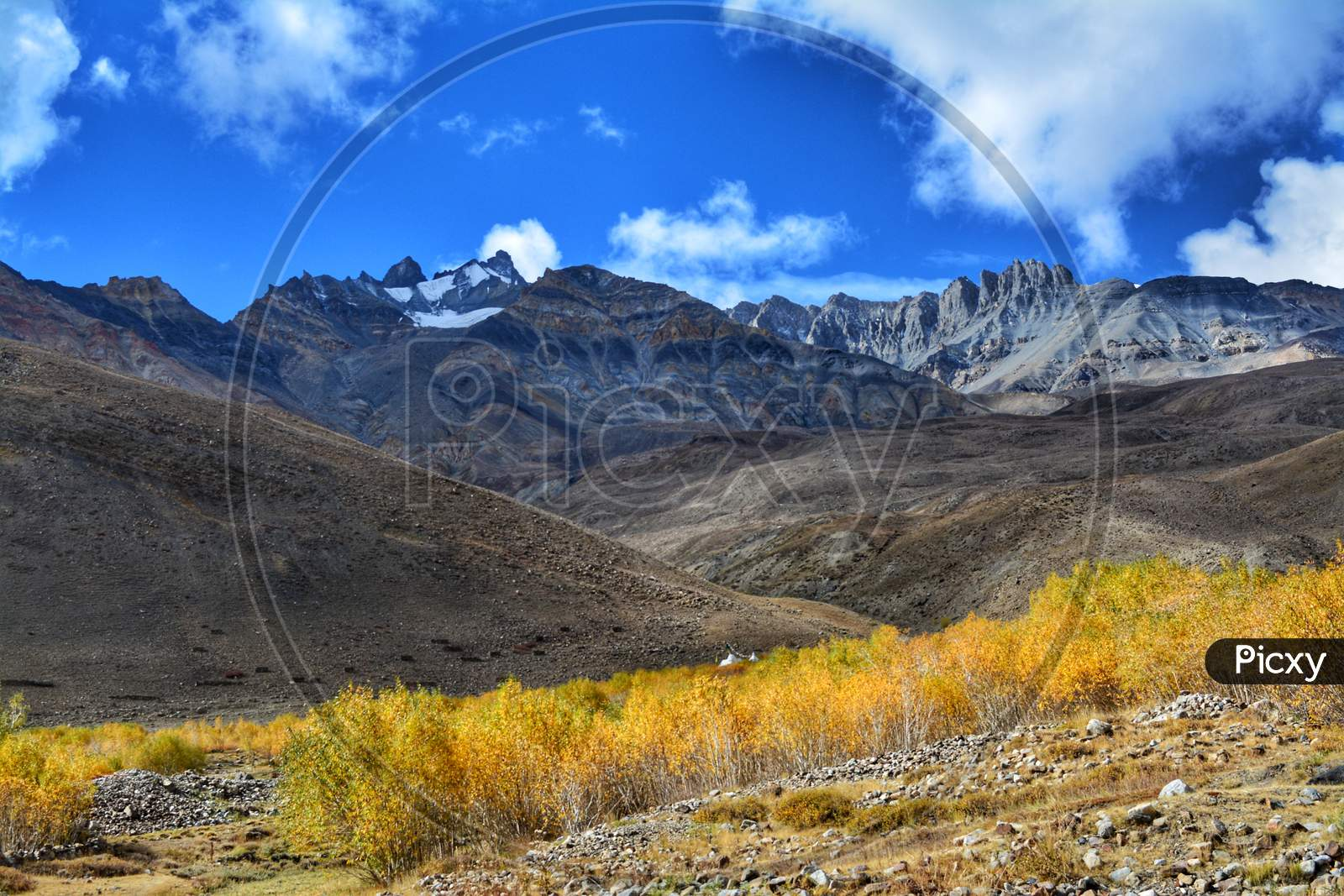 Mountain landscapes in Himachal Pradesh with yellow trees
