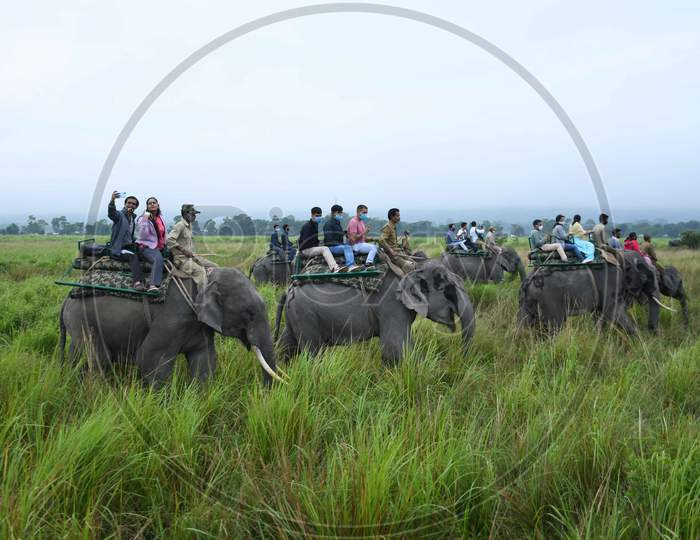 Tourists ride on elephants after the safari restarted following being shut since March due to the COVID-19 pandemic, at Kaziranga National Park in Golaghat District, Sunday, Nov. 1, 2020.