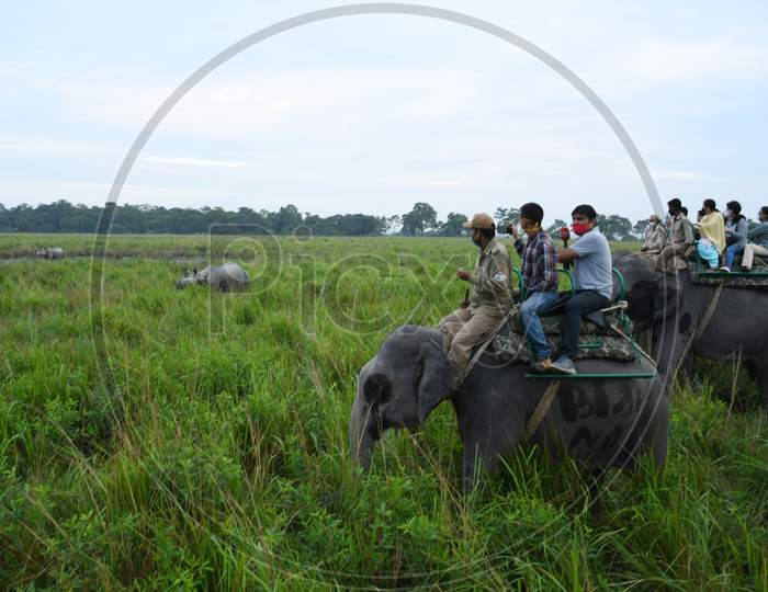 Tourists riding on elephants take pictures of a one horned rhinoceros at the Kaziranga National Park  in Golaghat District of Assam  , Sunday, Nov. 1, 2020.
