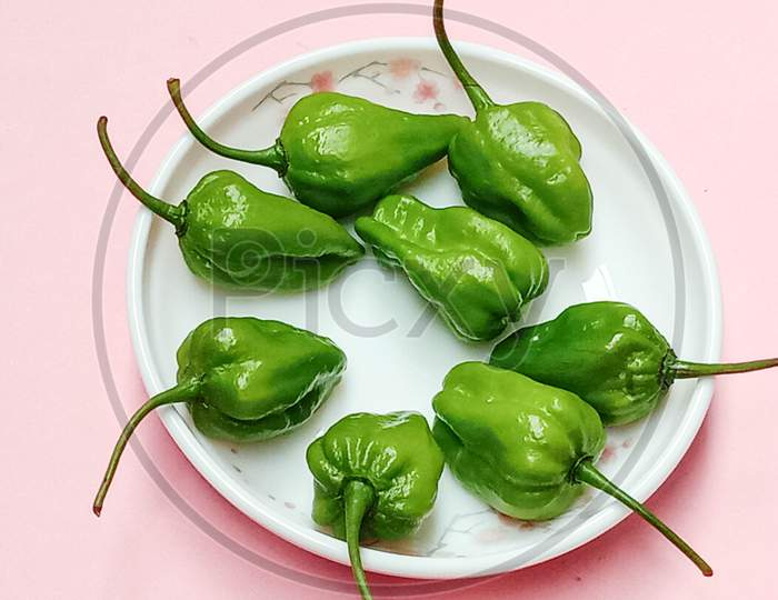Healthy And Spicy And Hot Green Chilli Stock