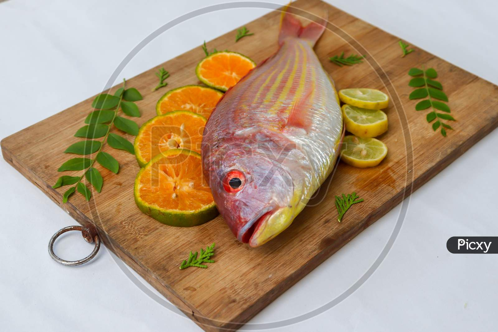 Close Up View Of Fresh Pink Perch (Thread Finned Bream) Decorated With Lemon Slice,Orange Slice And Curry Leaves On A Wooden Pad,White Background,Selective Focus.