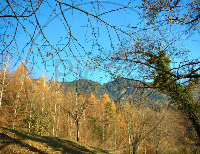 Fantastic autumn mood scenery from Triesenberg in Liechtenstein 18.11.2020