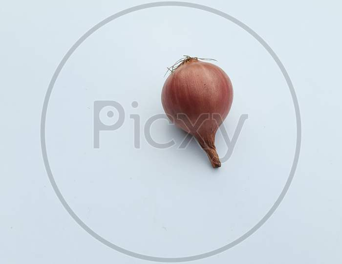 A Onion image in white Background, Onion image,Selective Focus