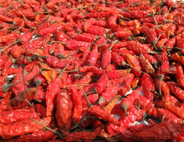 Fresh Dry Red Chilies With Blur Background