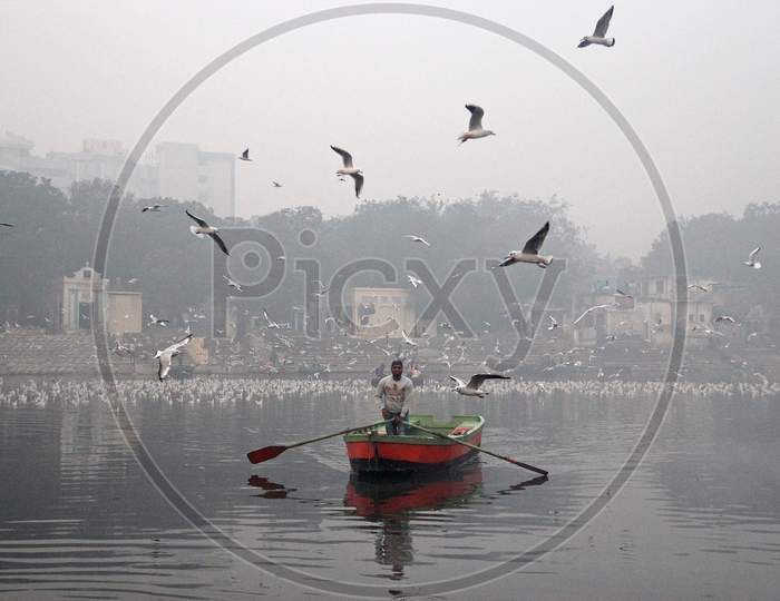 A man rides a boat as a flock of birds fly over the Yamuna river on a smoggy morning in New Delhi, November 9, 2020.