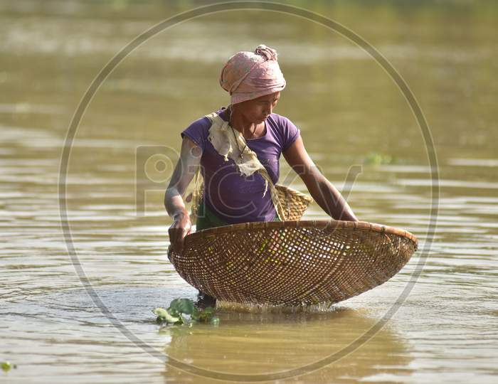 Women of Karbi tribe use traditional method to catch fishes in shallow waters at Burapahar near Kaziranga in Assam on Dec 28,2020.