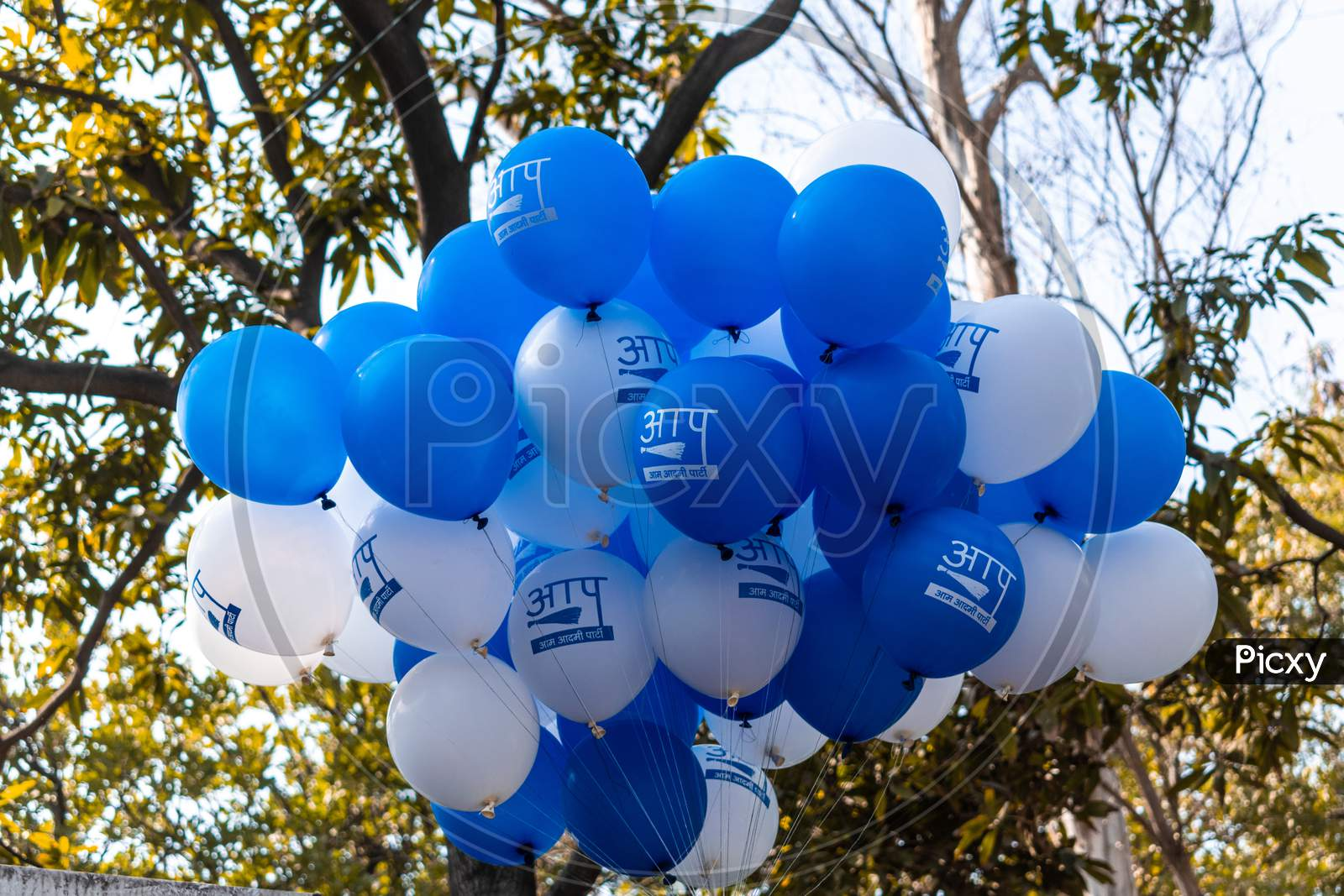 Aam Aadmi Party Office decorated with balloons on the result day of Delhi Assembly Election 2020