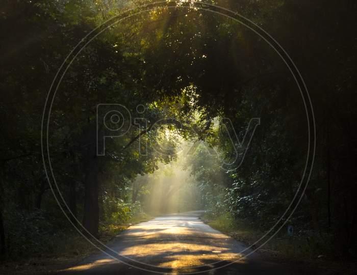 Sun Rays Falling on Rural Village Roads