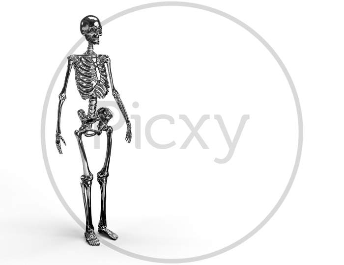 3D Render Of A Full Body Shiny Reflective Metallic Skeleton In White Background With Space For Text.