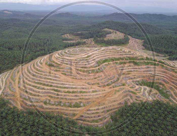 Aerial View Land Clearing At Oil Palm Estate At Kedah.