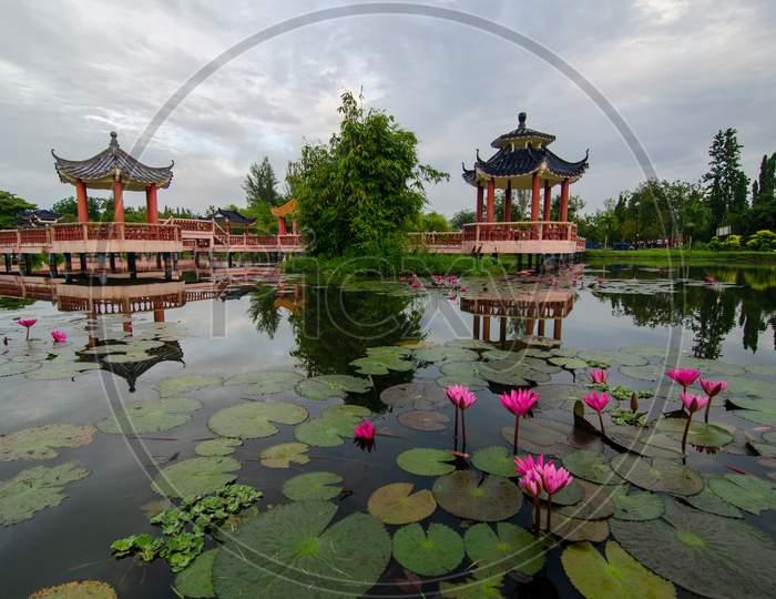 Melati Lake, Perlis, Malaysia With Foreground Lotus Flower.