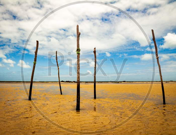 Logs Nailed To The Beach. Wooden Sticks On The Coastal Floor.