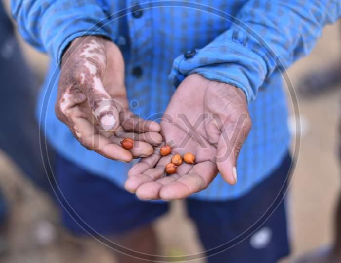 A migrant worker from Bihar eats (Black Gram) Chana as he waits at the Telangana-Andhra Pradesh Border to get permission to cross the border, Aswaraopet, May 16,2020