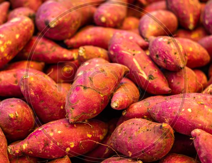 Numerous Sweet Potatoes Freshly Harvested With Pink Peel. Food For Vegetarians And Vegans.