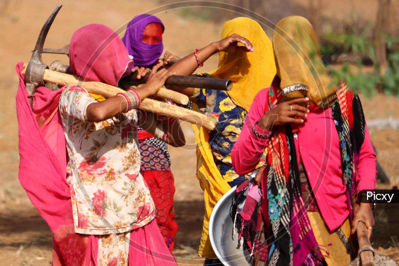 Labourers Going For Works Under The Mahatma Gandhi National Rural Employment Guarantee Act (Mgnrega) On A Outskirts Of Ajmer, Rajasthan, India On 19 May 2020.