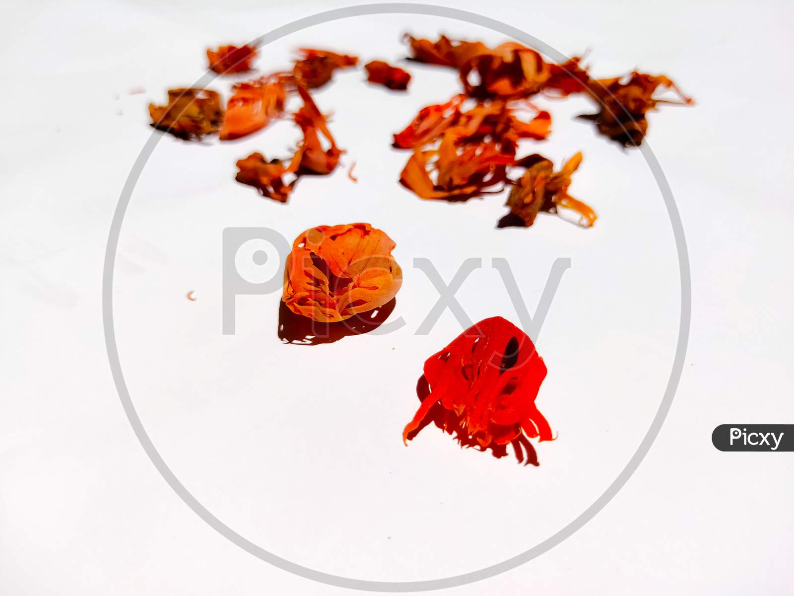 Mace Spice Isolated In White Background