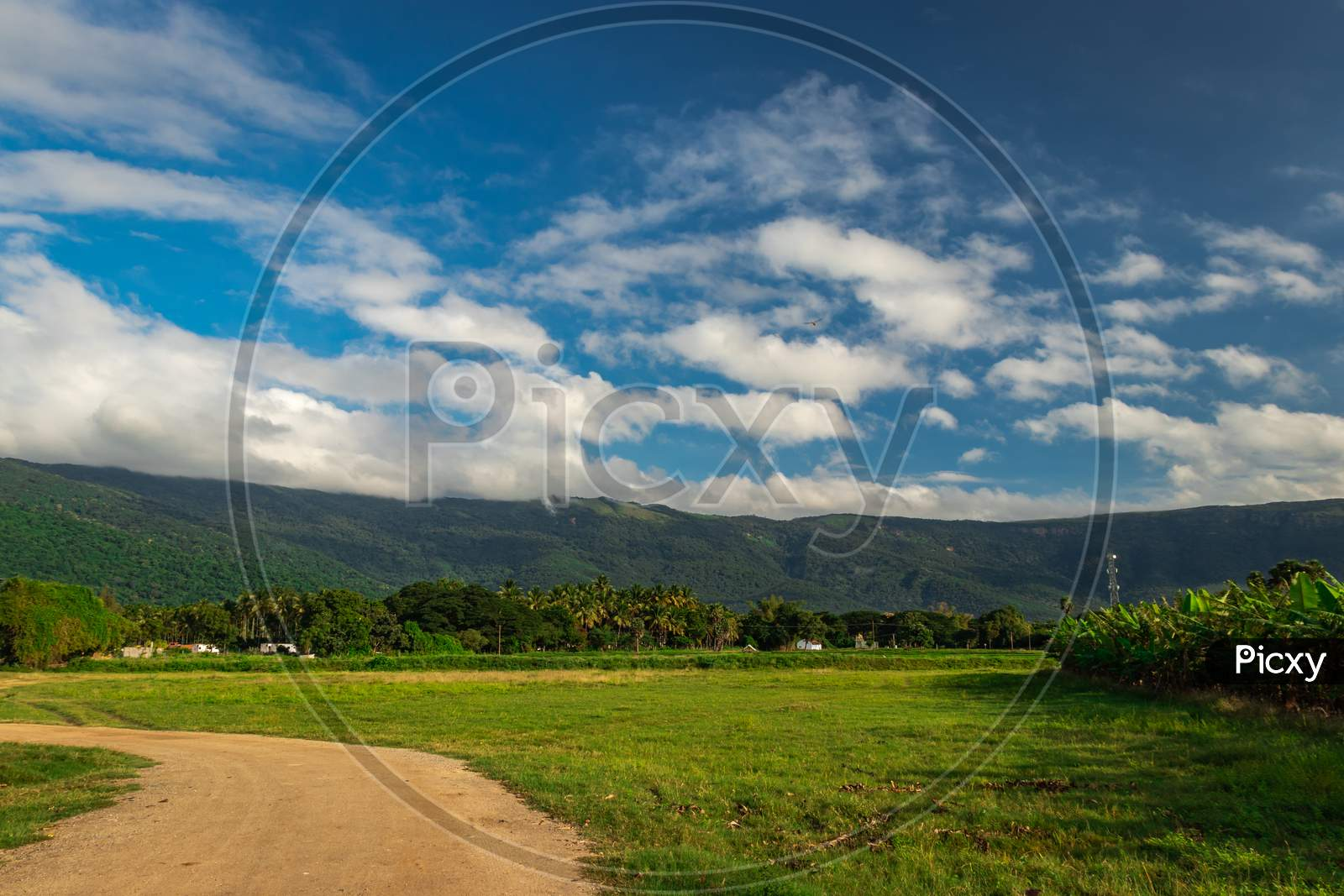 Mountains Velliangiri View With Blue Sky And Green Forest