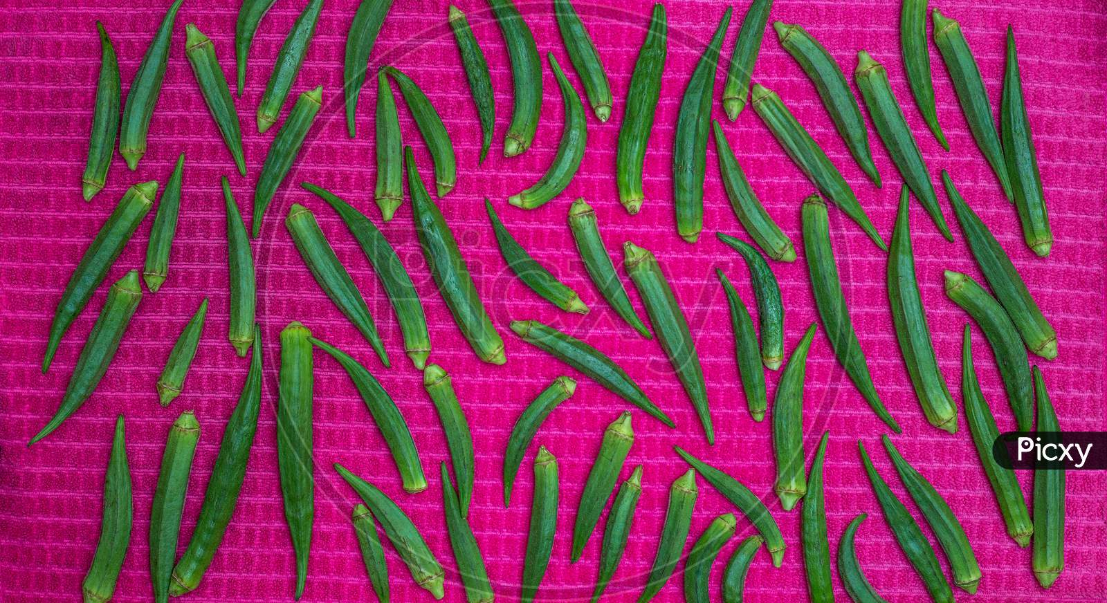 Green Lady Fingers Pattern From Top View, Okra Vegetable On Pink Cloth Background