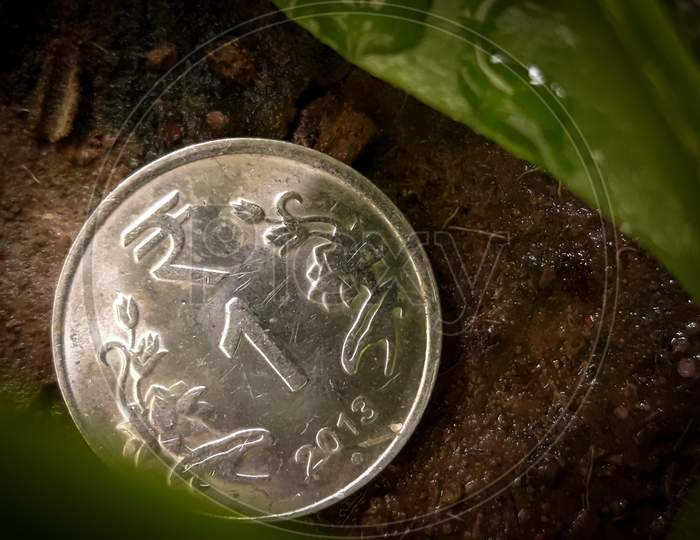 1 Rupee Coin On The Ground With Leaves