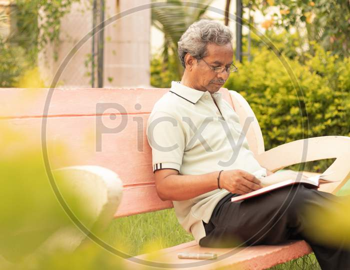 An old man or Elderly man reading a book in a Park