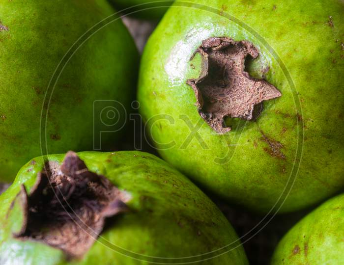 Guava Is A Tropical Fruit Which Are Rich In Dietary Fiber And Vitamin C