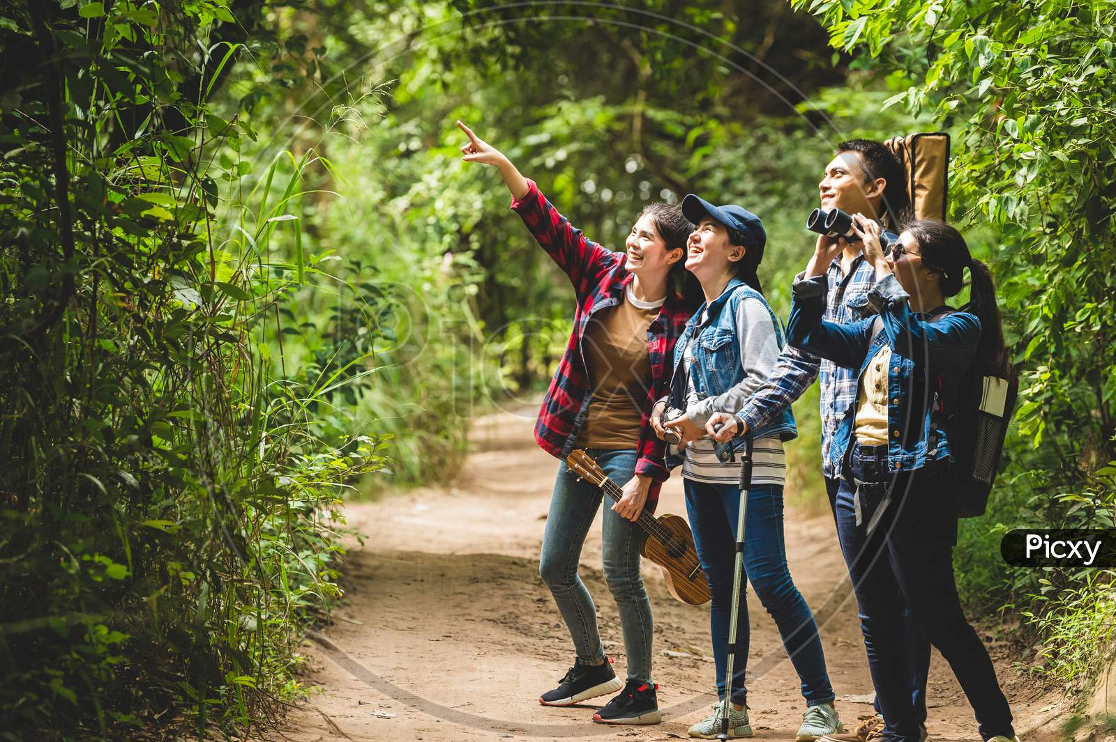 Group Of Asian Friends Team Adventure For Hiking And Camping In Forest Together. Family Travel Relaxation. Trekking And Trail Activity In Wild Life Concept. Woman Pointing At Tree Or Sky. Copy Space