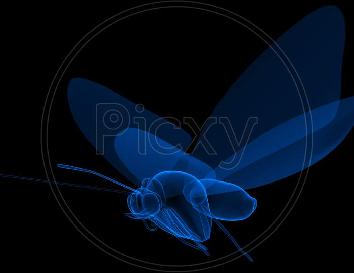 Blue coloured Butterfly in Black background 3d rendering