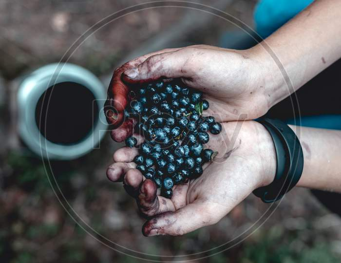 Hands full of berries.