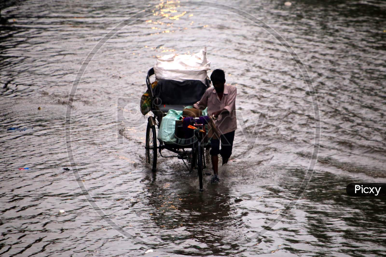 A rickshaw puller wades through a flooded road during heavy rains in Ajmer, On August 1, 2020.