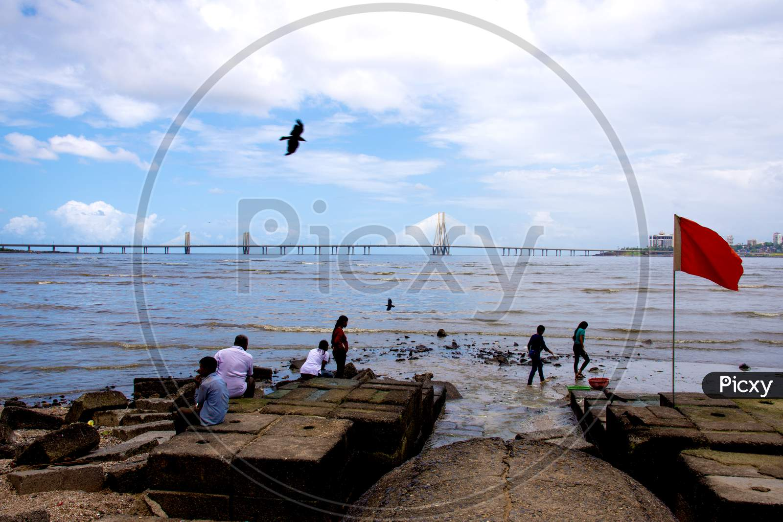 Volunteers helping to clean up the Mumbai dadar beach during rain