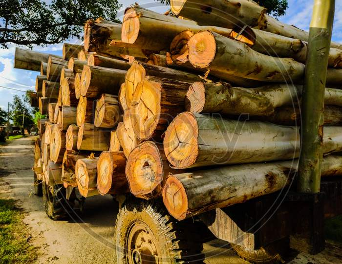 wood cut lumber in truck, transport for industry