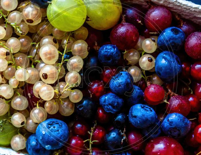 Abstract Close Up Colorful Berries Such As Blueberry, Cherry White Currant & Red Currant